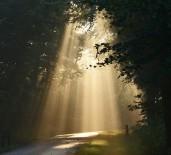 lighted-path-441x400